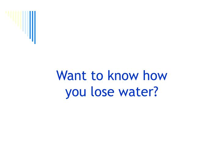 Want to know how you lose water?