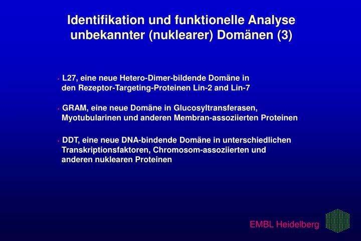 Identifikation und funktionelle Analyse   unbekannter (nuklearer) Domänen (3)