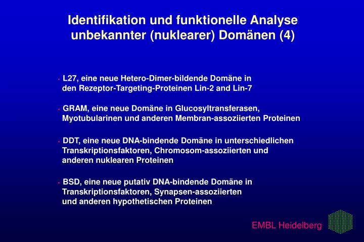 Identifikation und funktionelle Analyse   unbekannter (nuklearer) Domänen (4)