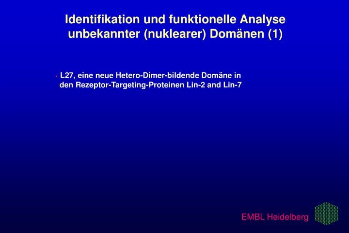 Identifikation und funktionelle Analyse   unbekannter (nuklearer) Domänen (1)