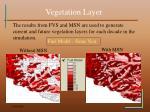 vegetation layer