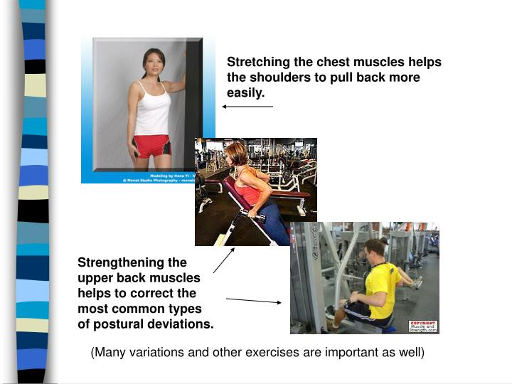 Stretching the chest muscles helps the shoulders to pull back more easily.