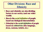 other divisions race and ethnicity