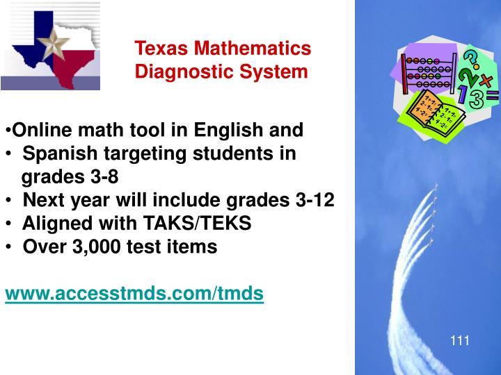 Texas Mathematics Diagnostic System