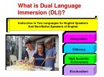 what is dual language immersion dli