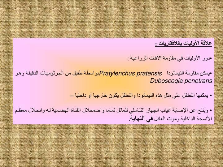 علاقة الأوليات باللافقاريات :