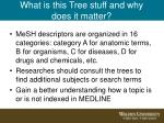 what is this tree stuff and why does it matter