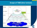 scope of tam time horizon