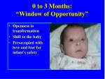0 to 3 months window of opportunity