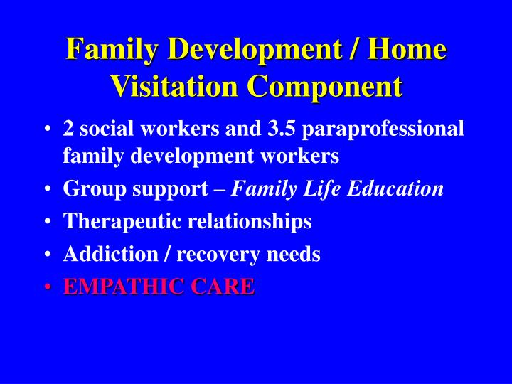 Family Development / Home Visitation Component