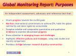 global monitoring report purposes