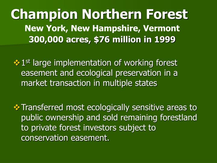 Champion Northern Forest