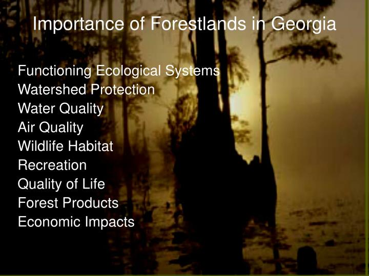 Importance of Forestlands in Georgia