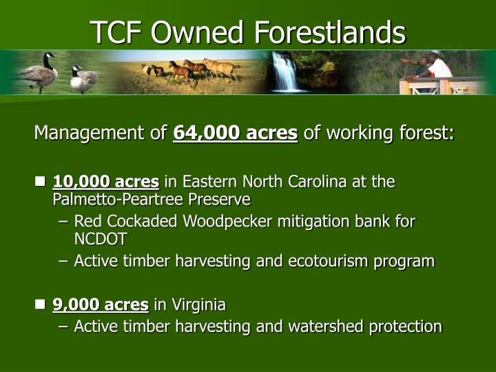 TCF Owned Forestlands