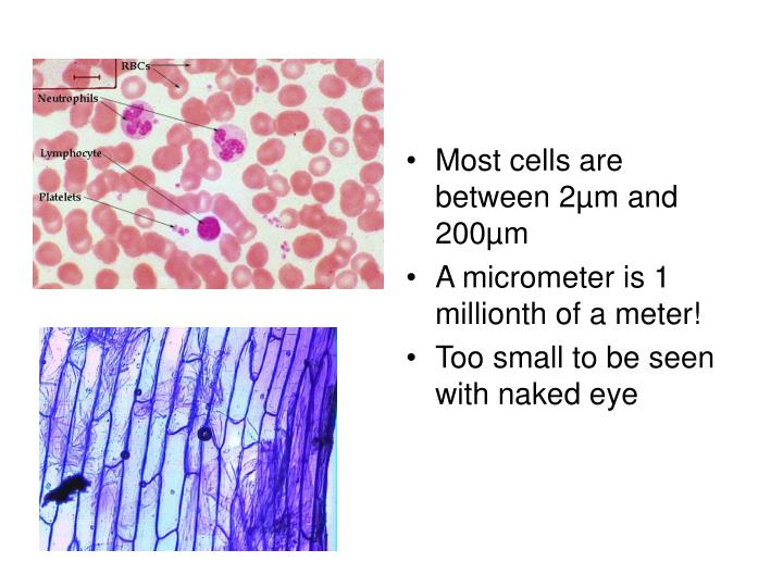 Most cells are between 2