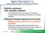 agile manifesto 1 follow these principles for developing software