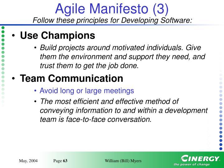 Agile Manifesto (3)