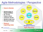 agile methodologies perspective
