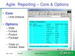 agile reporting core options