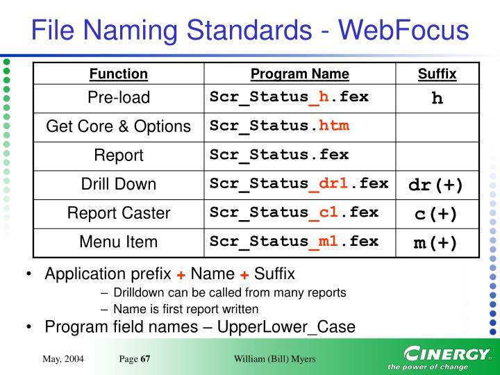 File Naming Standards - WebFocus
