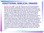 additional biblical images2