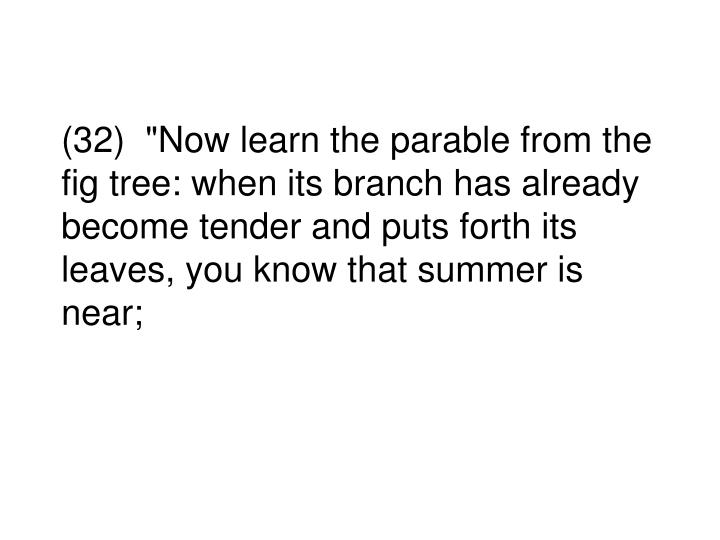 """(32)  """"Now learn the parable from the fig tree: when its branch has already become tender and puts forth its leaves, you know that summer is near;"""