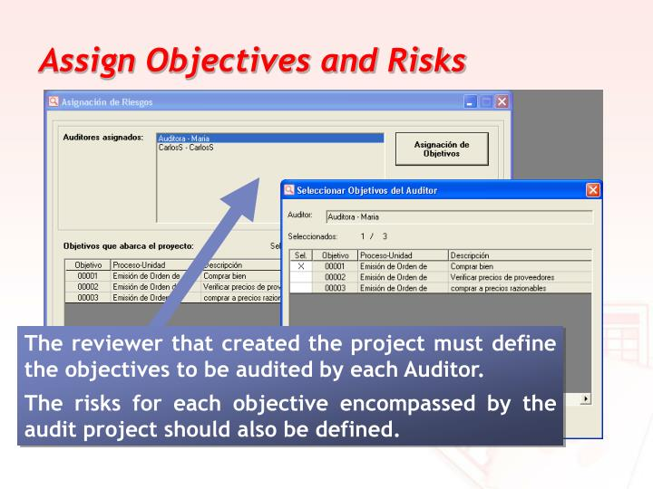 Assign Objectives and Risks