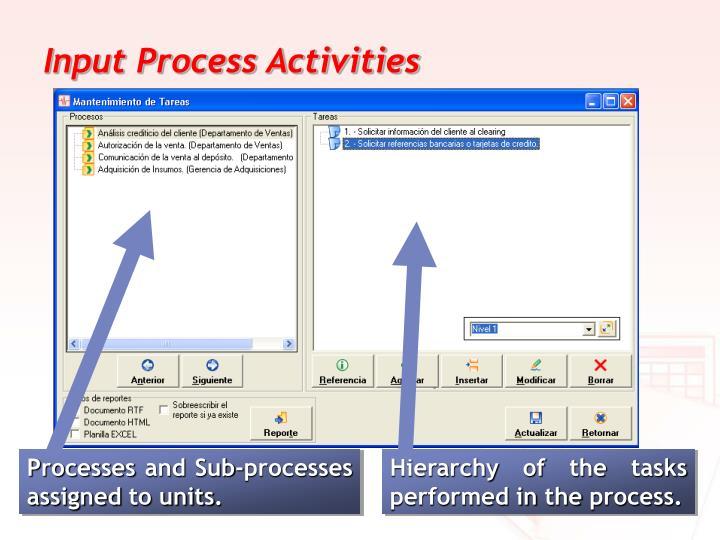 Input Process Activities