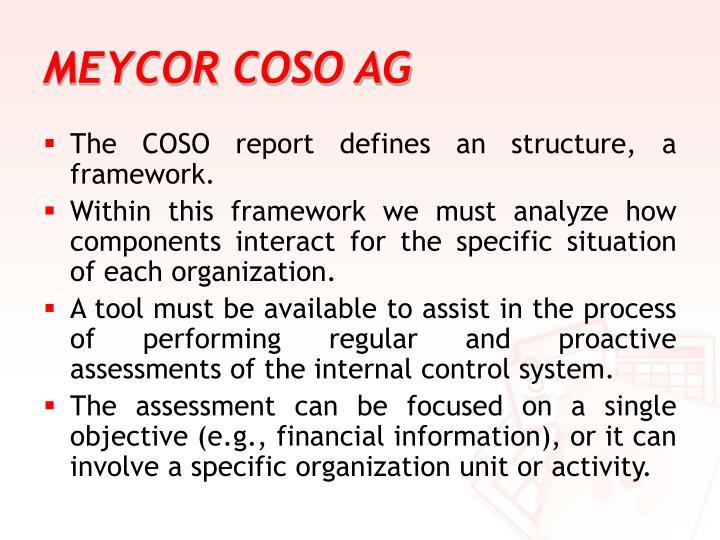 MEYCOR COSO AG