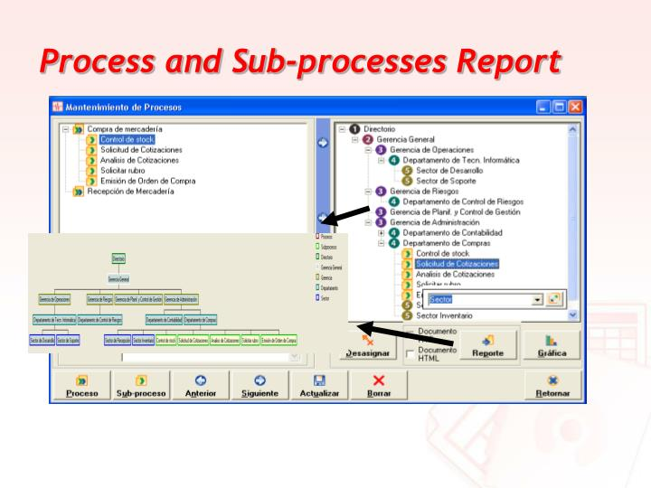 Process and Sub-processes Report
