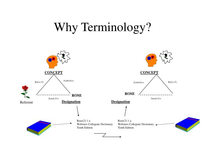 Why Terminology?
