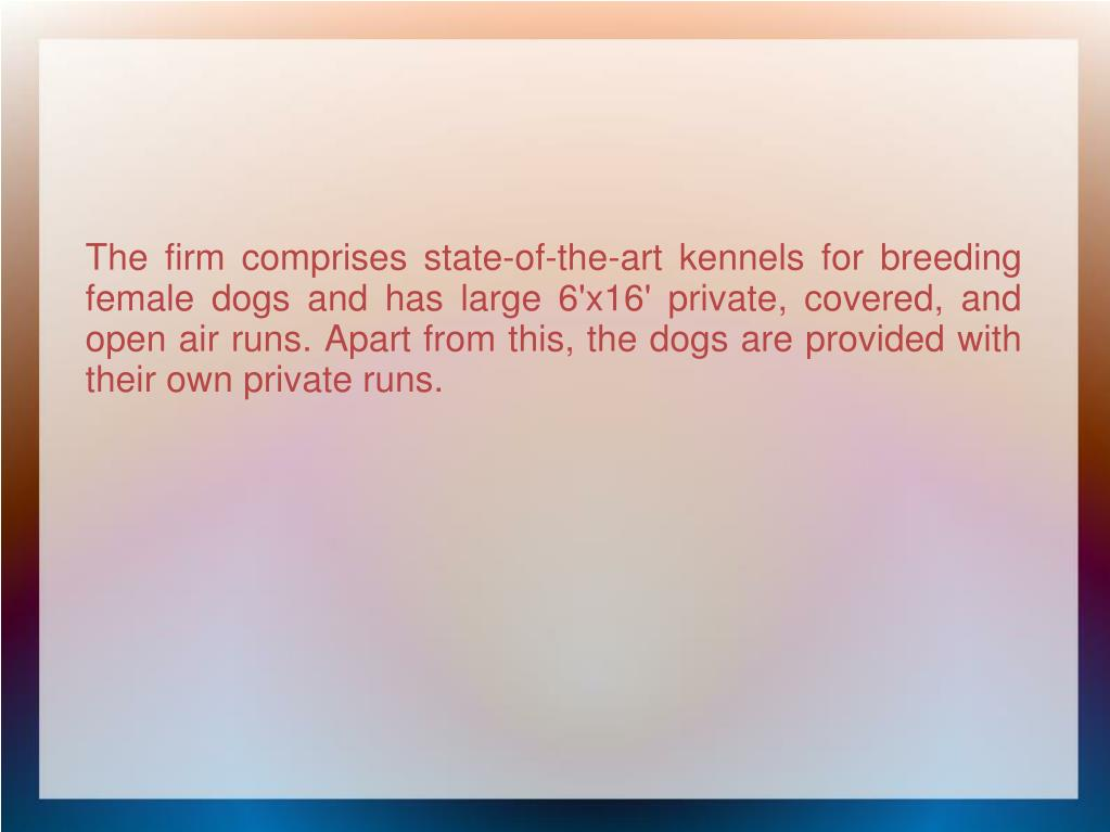 The firm comprises state-of-the-art kennels for breeding female dogs and has large 6'x16' private, covered, and open air runs. Apart from this, the dogs are provided with their own private runs.