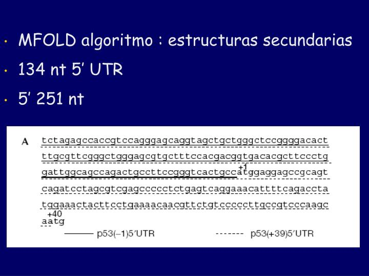 MFOLD algoritmo : estructuras secundarias