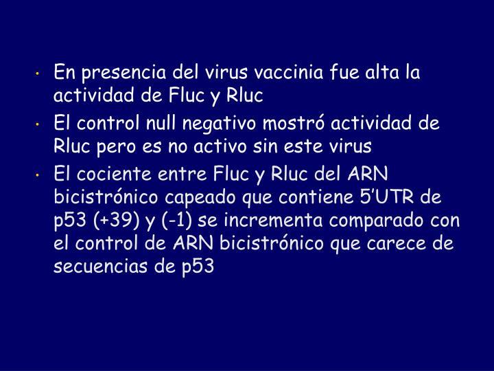 En presencia del virus vaccinia fue alta la actividad de Fluc y Rluc
