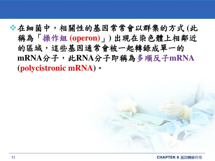 在細菌中,相關性的基因常常會以群集的方式
