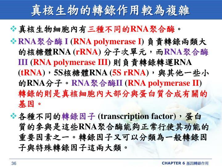 真核生物的轉錄作用較為複雜