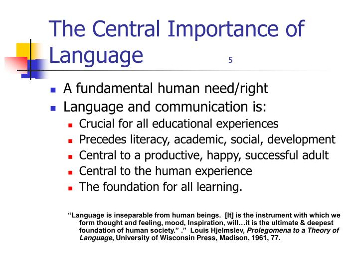 The Central Importance of Language