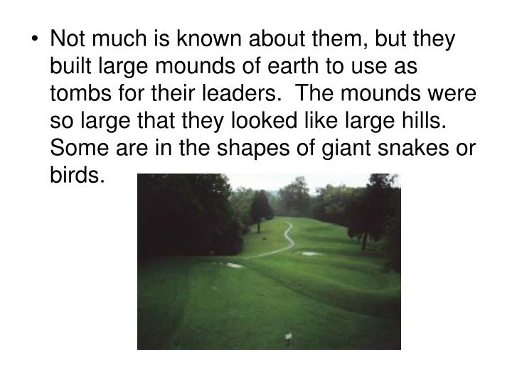 Not much is known about them, but they built large mounds of earth to use as tombs for their leaders.  The mounds were so large that they looked like large hills.  Some are in the shapes of giant snakes or birds.