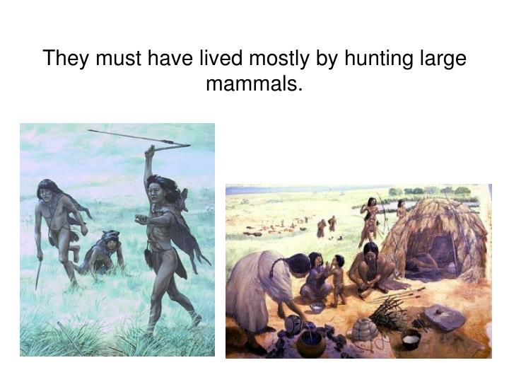 They must have lived mostly by hunting large mammals.