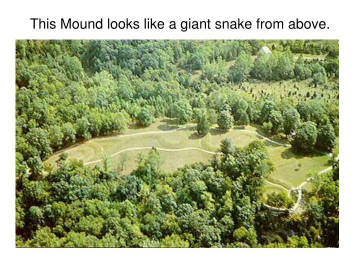 This Mound looks like a giant snake from above.