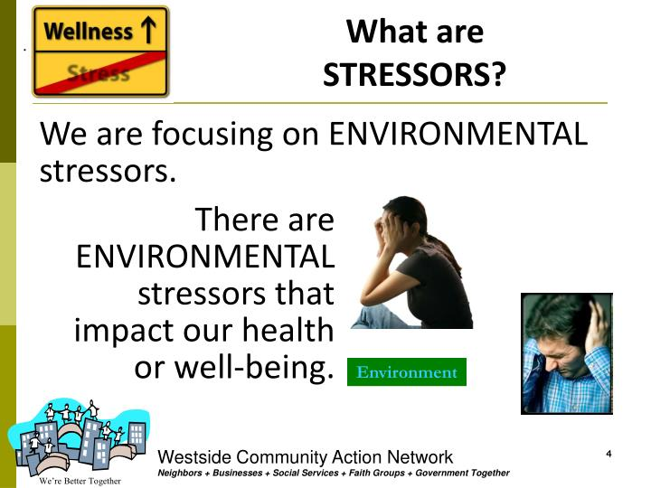 What are STRESSORS?