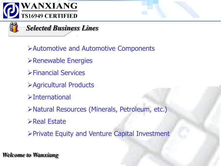 Selected Business Lines
