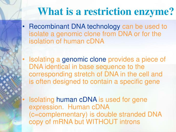 What is a restriction enzyme