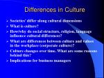 differences in culture1