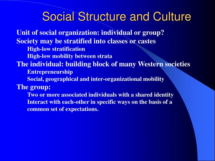 Social Structure and Culture