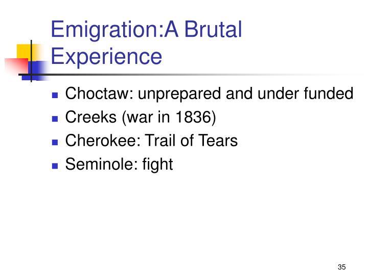 Emigration:A Brutal Experience