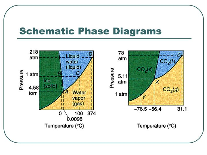 Schematic Phase Diagrams