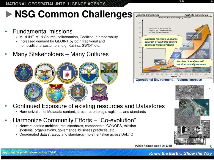 NSG Common Challenges