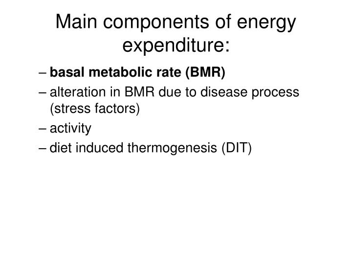 Main components of energy expenditure