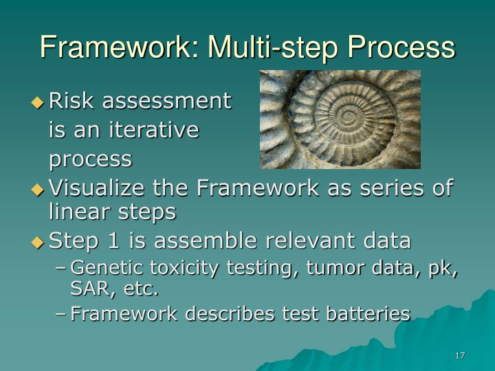 Framework: Multi-step Process